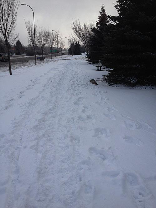 Scenic Drive Walkway